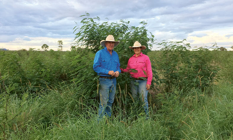 Ruth and Tom Wagner from Moura Queensland in a field